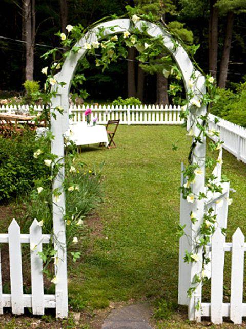 archway in yard