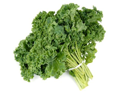 a bunch of kale gathered with rubber band