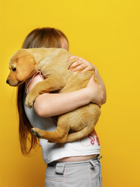girl holding dog yellow background