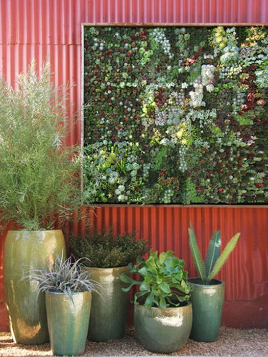 Vertical Gardens   How To Grow A Vertical Garden