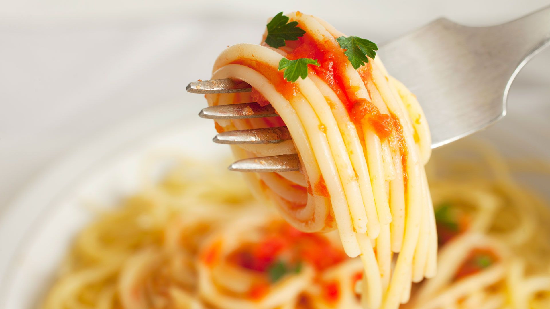spaghetti with tomato sauce on a fork
