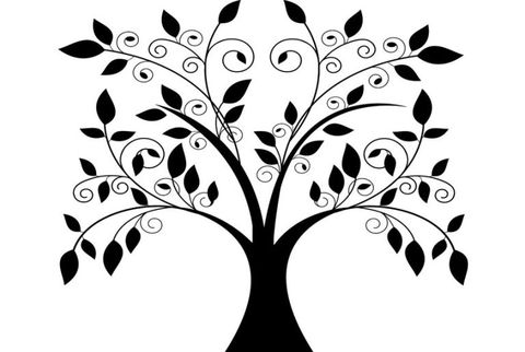 giant tree with falling leaves decal