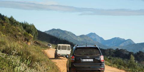 Road, Mountainous landforms, Plant, Automotive exterior, Vehicle, Automotive tail & brake light, Automotive tire, Hill, Highland, Plant community,
