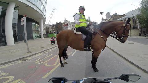 London mounted police pull over Suzuki GSXR rider after wheelie