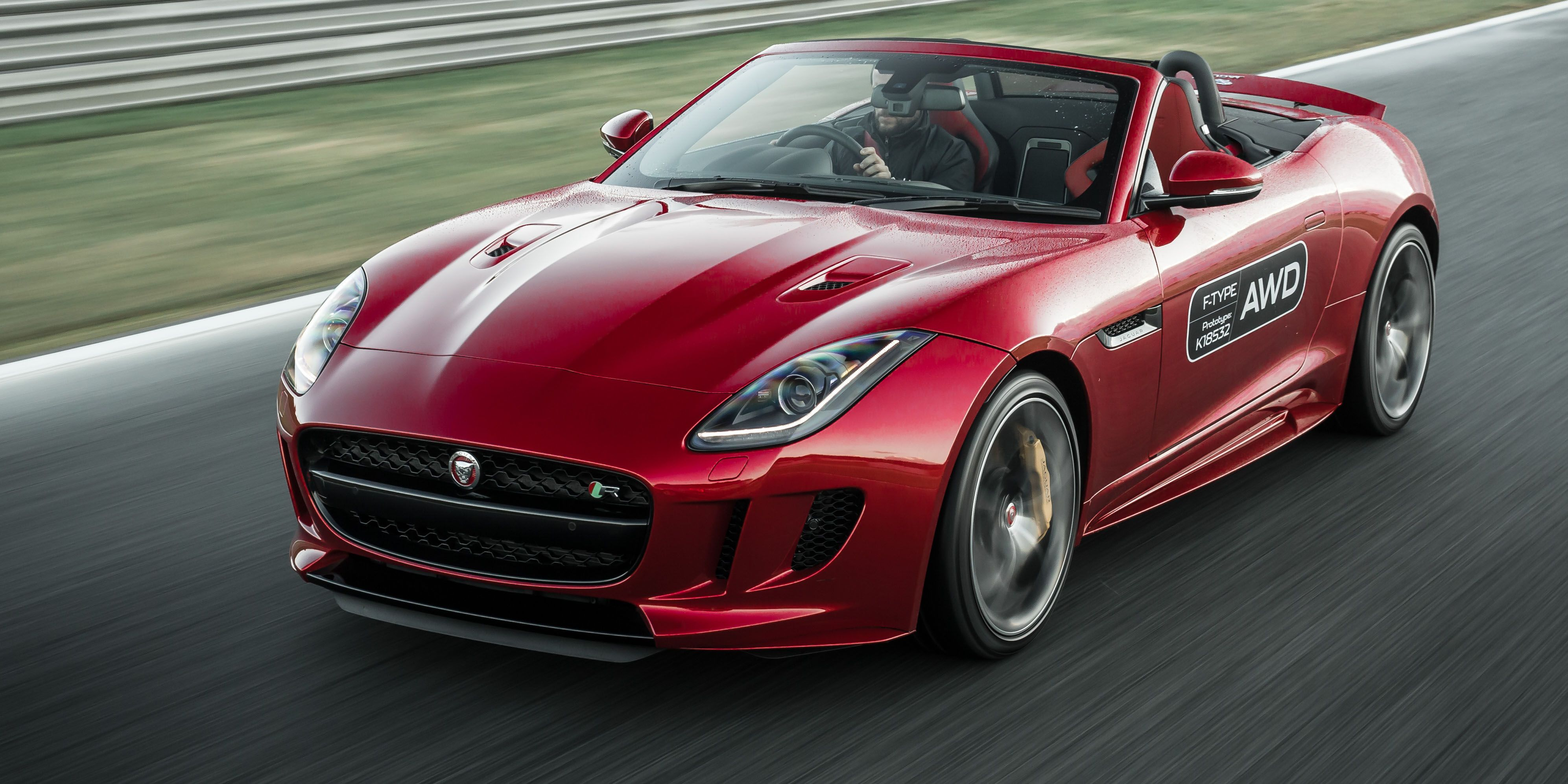 <em>Jaguar</em>