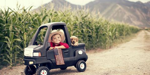 Here Are a Ton of Dogs in Trucks