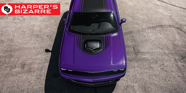 Dodge Challenger Shaker Review Scat Pack Hemi Rt Stand