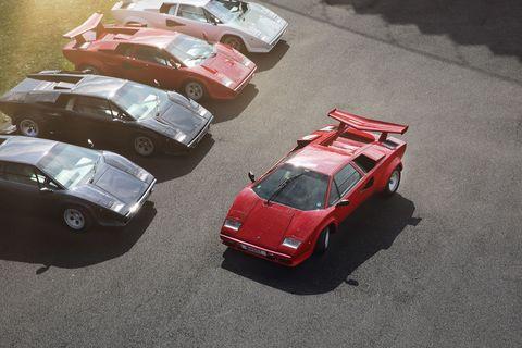 Lamborghini Countachs