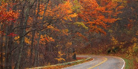 Virginia scenic road - cropped