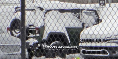 Mesh, Wire fencing, Canidae, Snow, Chain-link fencing, Fence,