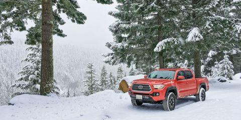 Land vehicle, Vehicle, Car, Snow, Automotive tire, Tire, Automotive exterior, Winter, Pickup truck, Off-road vehicle,