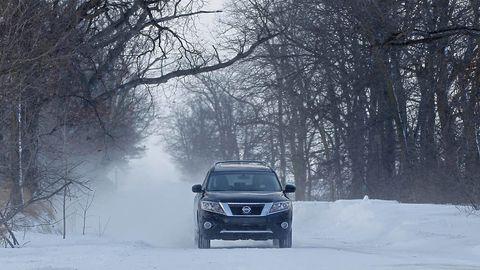 Winter, Branch, Automotive lighting, Automotive exterior, Headlamp, Freezing, Car, Automotive mirror, Automotive fog light, Atmospheric phenomenon,