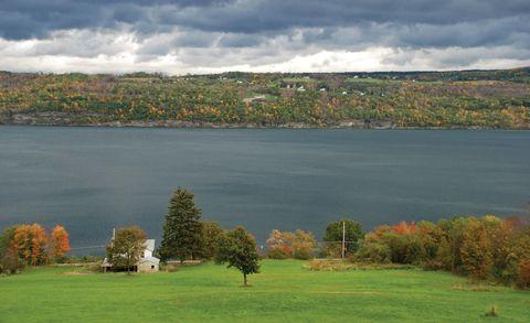 Nature, Vegetation, Natural landscape, Water, Landscape, Land lot, Bank, Plain, Reservoir, Lake,