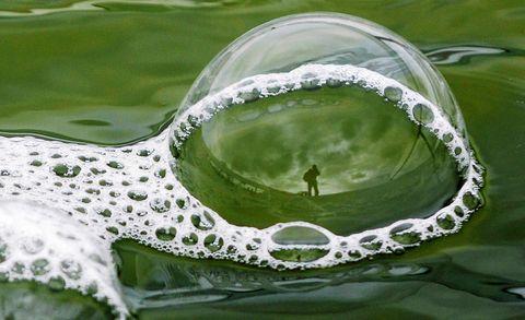 Liquid, Fluid, Green, Drop, Water resources, Transparent material, Macro photography, Liquid bubble, Moisture, Marine biology,