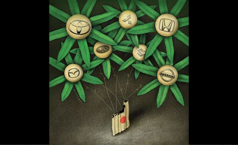 Green, Circle, Illustration, Creative arts, Vegetable, Craft,