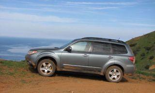 Tire, Wheel, Nature, Vehicle, Automotive tire, Natural environment, Automotive design, Land vehicle, Rim, Alloy wheel,
