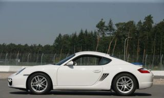 Tire, Wheel, Nature, Automotive design, Alloy wheel, Vehicle, Automotive tire, Land vehicle, Rim, Spoke,