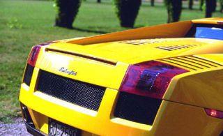 Motor vehicle, Mode of transport, Automotive design, Grass, Yellow, Green, Transport, Automotive exterior, Car, Sports car,