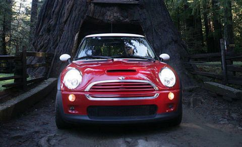 The E Our Occupied And That Mini Everyone Agreed Cooper S Is A Wise Use Of Especially If It In