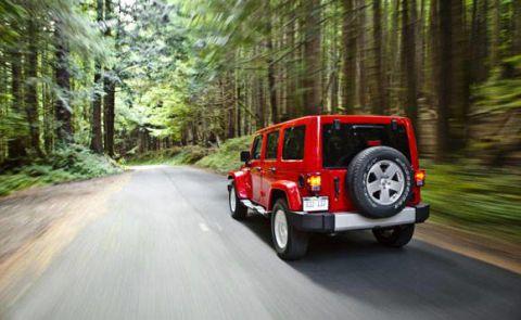 Tire, Motor vehicle, Automotive tail & brake light, Nature, Mode of transport, Automotive tire, Vehicle, Natural environment, Road, Automotive lighting,