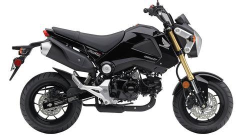 Motorcycle, Motor vehicle, Wheel, Tire, Automotive tire, Automotive design, Transport, Fuel tank, Rim, Spoke,