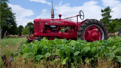 Agricultural machinery, Farm, Red, Field, Agriculture, Rural area, Plantation, Machine, Tread, Tractor,