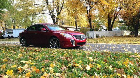 Land vehicle, Vehicle, Car, Rim, Leaf, Automotive lighting, Alloy wheel, Fender, Full-size car, Mid-size car,