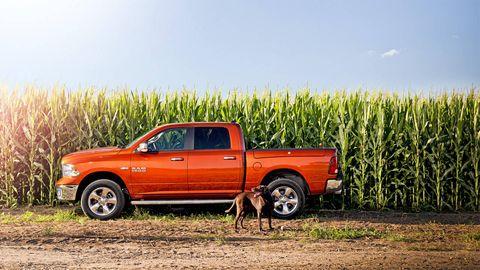 Wheel, Motor vehicle, Tire, Pickup truck, Truck, Natural environment, Vehicle, Automotive tire, Landscape, Plain,