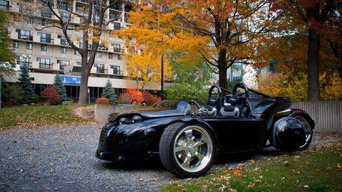 Tire, Automotive design, Rim, Automotive lighting, Tree, Headlamp, Alloy wheel, Automotive tire, Leaf, Automotive wheel system,