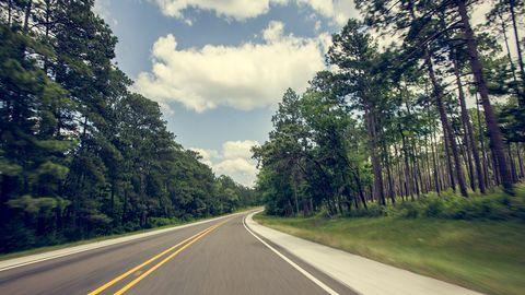 Nature, Vegetation, Road, Green, Grass, Daytime, Natural environment, Natural landscape, Road surface, Infrastructure,