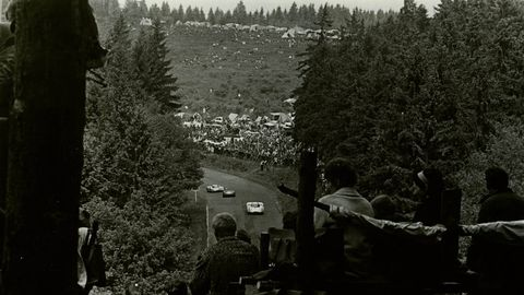 Monochrome, Monochrome photography, Black-and-white, Tints and shades, Evergreen, Luxury vehicle, Conifer, Temperate coniferous forest, Larch, Tropical and subtropical coniferous forests,