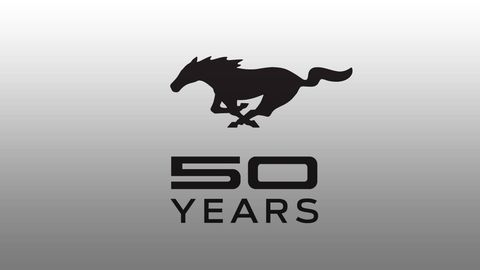 Logo, Font, Horse, Terrestrial animal, Stallion, Mustang horse, Pack animal, Graphics, Symbol, Mare,