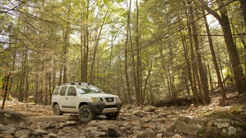 Tire, Motor vehicle, Wheel, Automotive tire, Natural environment, Automotive exterior, Landscape, Car, Fender, Forest,