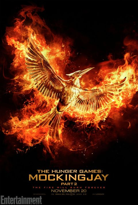 Amber, Bird, Orange, Darkness, Wing, Fire, Poster, Supernatural creature, Heat, Bird of prey,