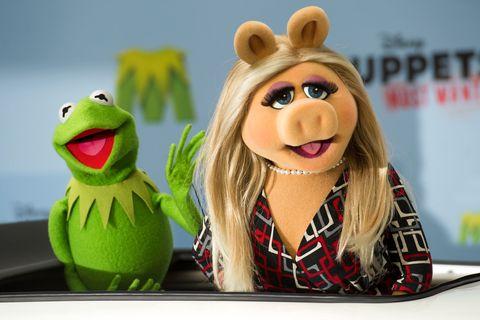 Kermit Piggy