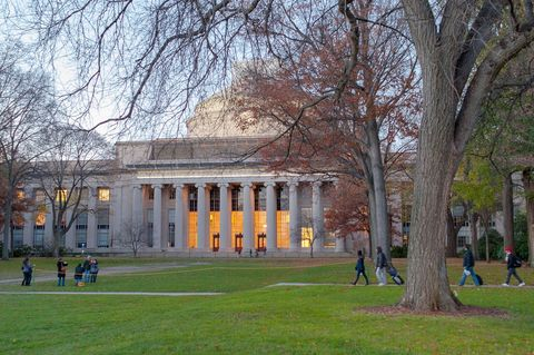 Tree, Public space, Woody plant, Lawn, Park, University, Campus, Academic institution, Spring, Official residence,