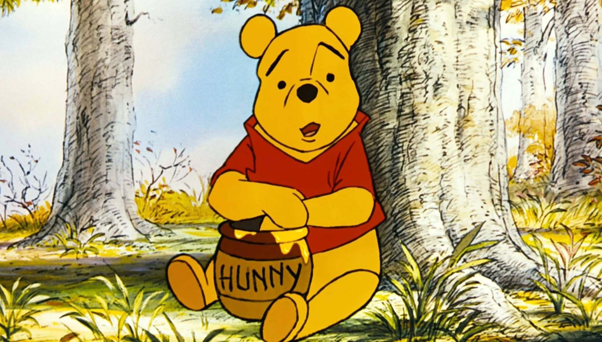 What sex is winnie the pooh