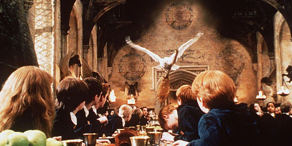 "This New Scientific Study About Owls Will Ruin ""Harry Potter"" For ..."