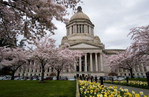 Olympia, Washington, Capitol building