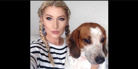 Dog breed, Dog, Carnivore, Eyelash, Mammal, Jaw, Iris, Organ, Earrings, Scent hound,