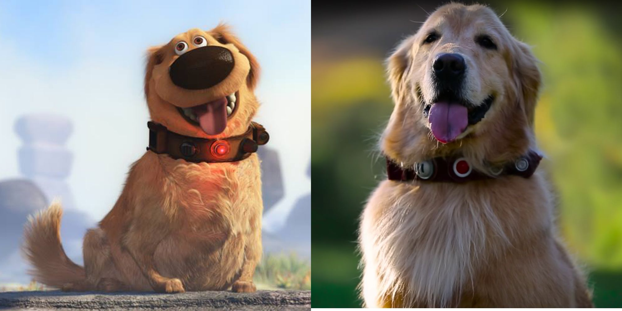 disney and pixar create dug from up in real life talking dog