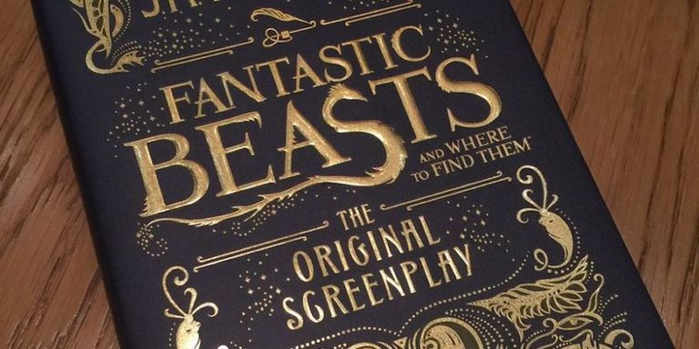 fantastic beasts and where to find them book. like staring into the sun fantastic beasts and where to find them book