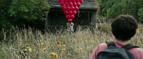 Balloon, Rural area, Wildflower, Prairie, Sunflower, Daisy family, Asterales, Yard, Village, Cottage,