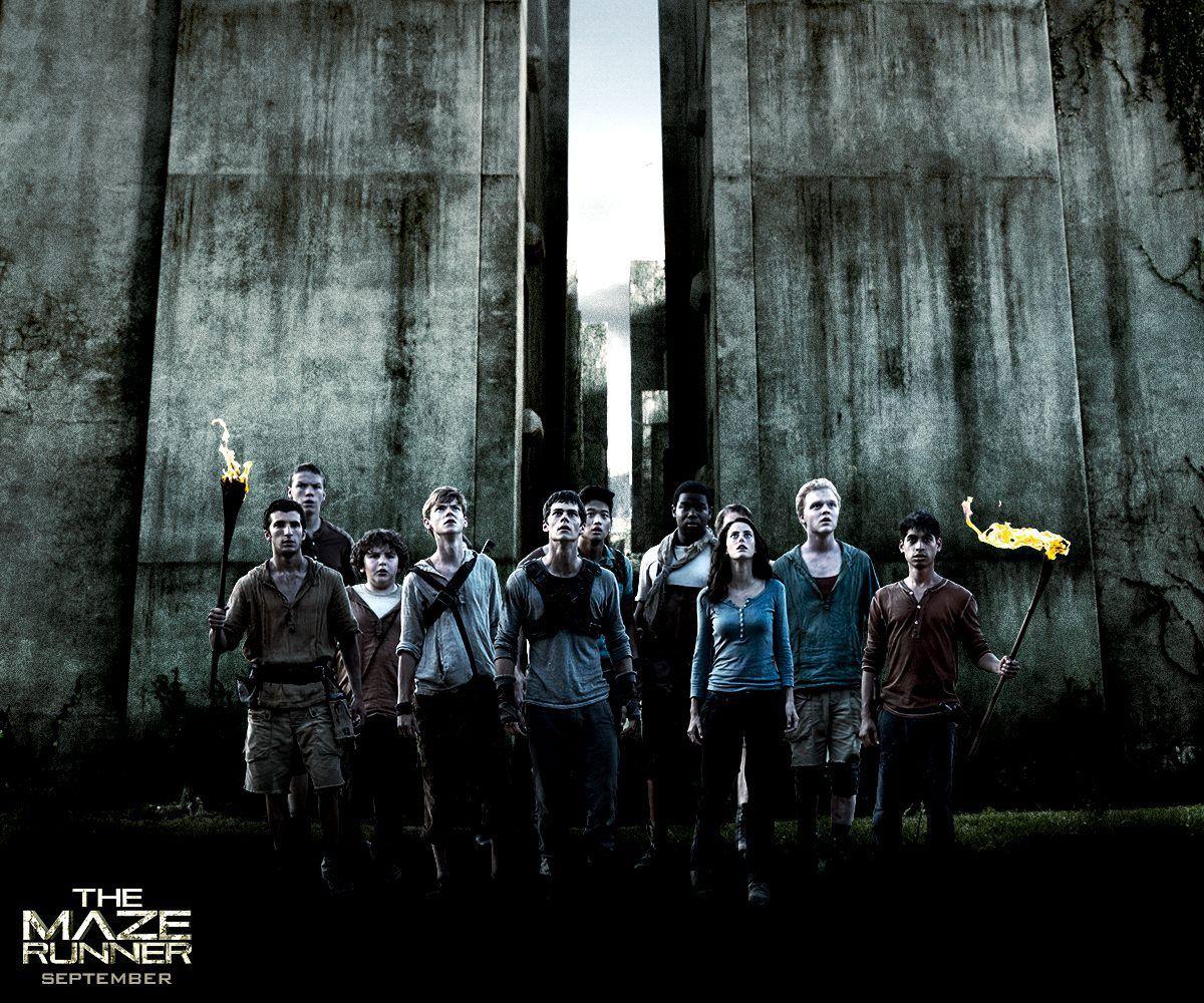 The Maze Runner Questions - Dylan O'Brien The Maze Runner Movie