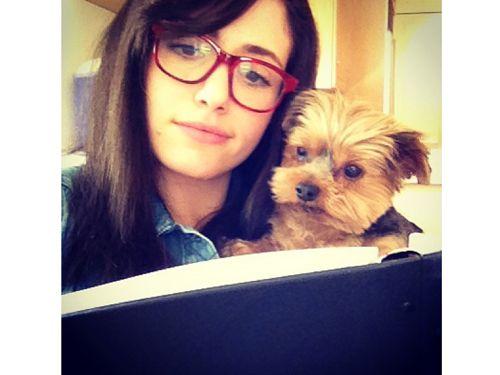 cutest celebrity pets celebrity pets on instagram