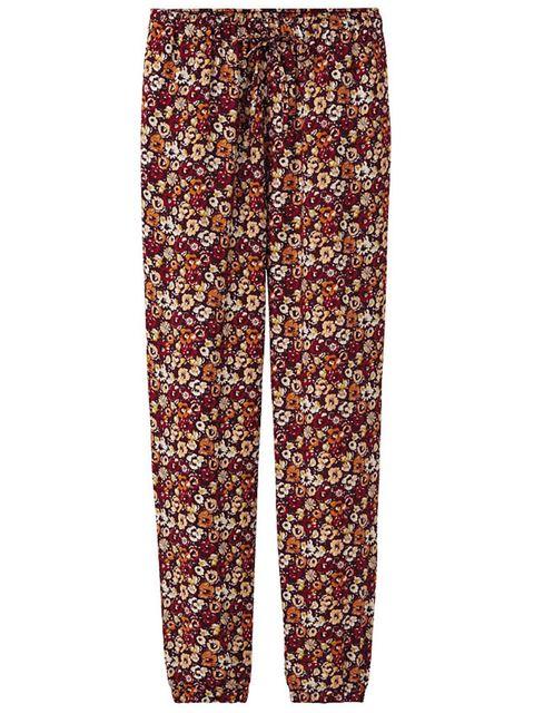 Brown, Orange, Peach, Active pants,