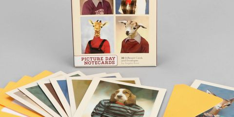 Adorable Animal Cards