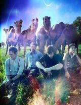 band paper route in front of camels