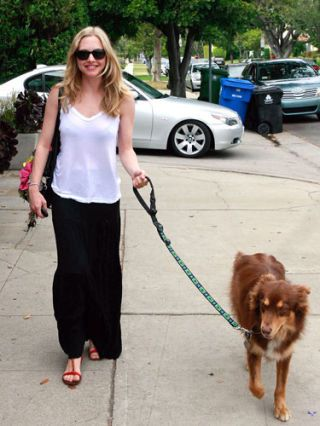 Amanda Seyfried on the streets of la walking her dog