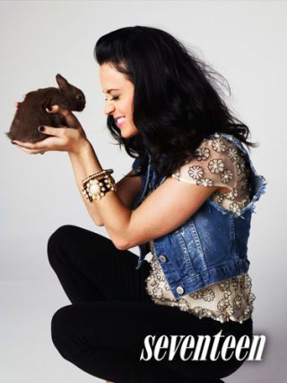 katy perry with bunny